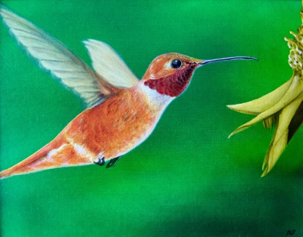 rufous hummingbird oil painting